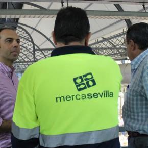 "Millán pide ""consensuar un gerente experimentado y libre de atadura política para Mercasevilla"""