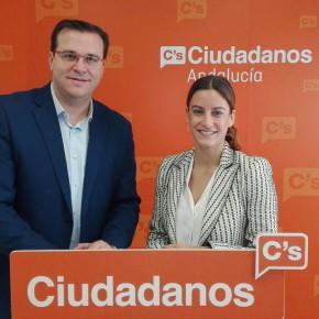 Ciudadanos consolida su crecimiento en la provincia de Sevilla con 142.300 votantes