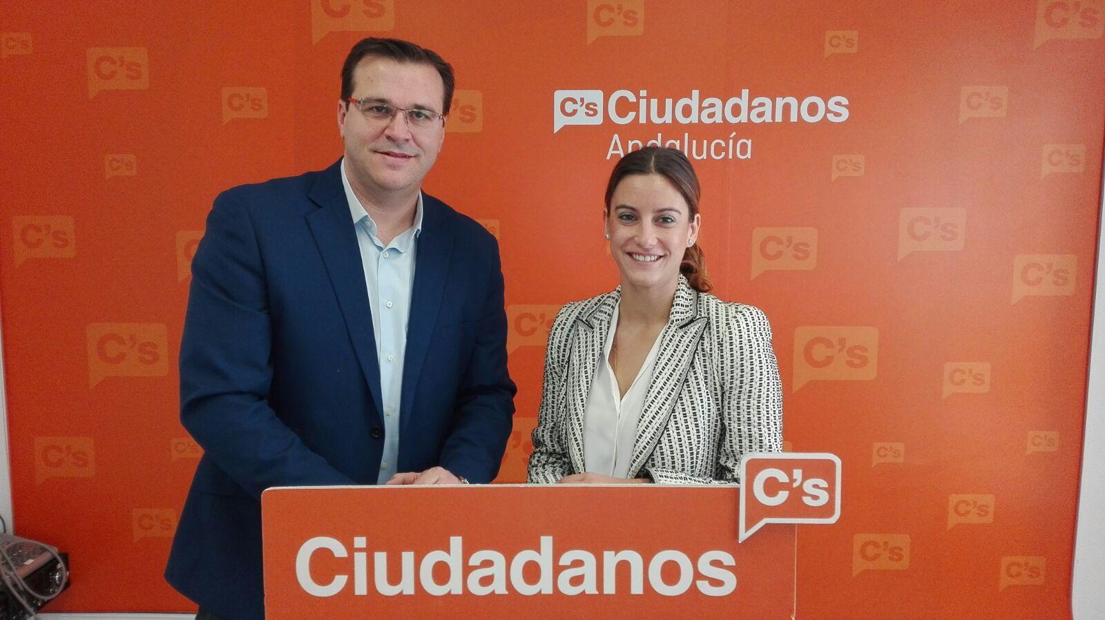 Los diputados al Congreso por Ciudadanos Sevilla, Virginia M Salmerón y Fidel Prieto, durante su intervención esta mañana