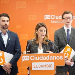 """Virginia M. Salmerón: """"Necesitamos renovar las instituciones, actualizarlas al tiempo que vivimos para que estén realmente al servicio de los ciudadanos"""""""