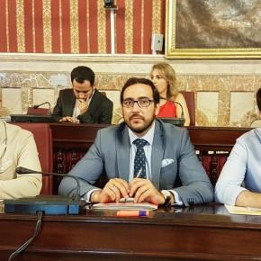 Sigue en directo las propuestas de C's Sevilla en el pleno del Ayuntamiento (30 de junio)