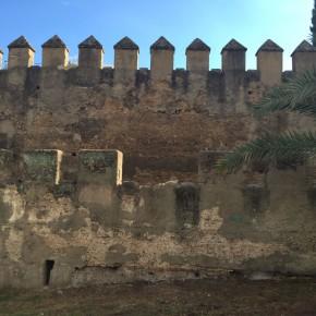 """Ciudadanos alerta de """"desprendimientos en la muralla de la Macarena"""" y urge a """"consolidar las zonas que lo precisen"""""""