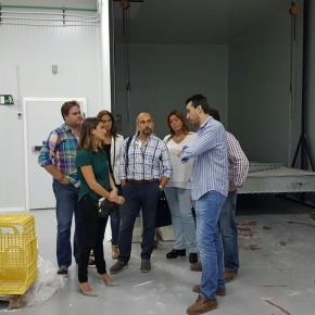 """Virginia Salmerón visita Utrera donde apuesta por """"políticas que generen empleo estable y de calidad y no alivios temporales"""""""