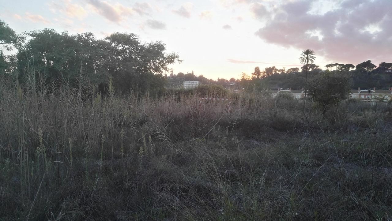 Huertos San Juan 2