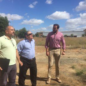 """Moraga reclama la """"poda inmediata y prioritaria de árboles"""" cercanos a colegios en Bellavista-La Palmera"""