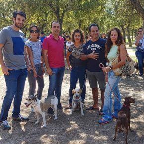 """Moyano propone """"mejorar la convivencia de los sevillanos y mascotas"""" con una nueva ordenanza de bienestar animal"""
