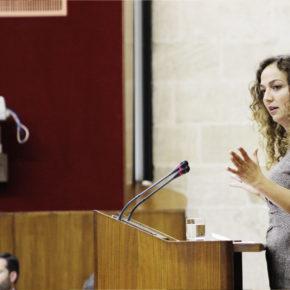 """Ciudadanos (Cs) reclama a la Junta la """"continuidad"""" del personal investigador en el Sistema Andaluz de Conocimiento"""