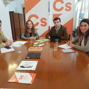 Ciudadanos (Cs) pide que ley andaluza contra el cambio climático apueste por las renovables y el transporte sostenible