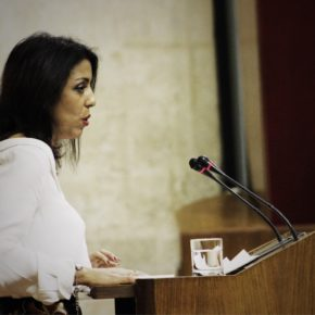 Ciudadanos (Cs) reclama a la Junta medidas para paliar la situación de colapso de la Audiencia Provincial de Sevilla