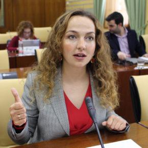 """Ciudadanos (Cs) reclama a la Junta """"más transparencia y agilidad"""" para averiguar el origen de los olores tóxicos en Coria"""