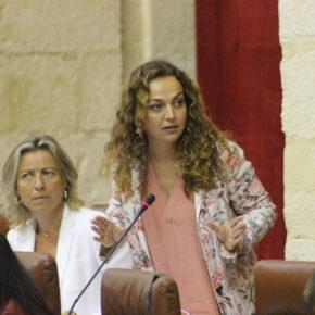 Ciudadanos (Cs) reclama a la Junta que dote de instalaciones deportivas al IES Néstor Almendros de Tomares