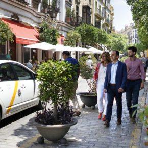 """Ciudadanos insta al """"diálogo con los vecinos y comerciantes para ofrecer todas las soluciones en Mateos Gago"""""""