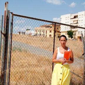 """Rosa Carro (Cs): """"mientras que en Alcalá haya caracolas en los colegios y la falta del nuevo IES, la educación está abandonada"""""""