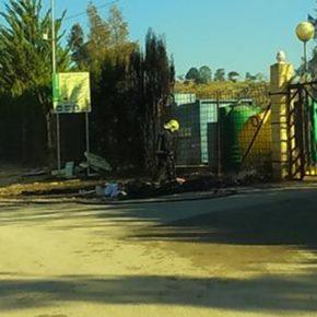 Ciudadanos (Cs) reclama al Ayuntamiento de Morón un protocolo de actuación para la retirada de animales muertos