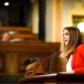 Ciudadanos (Cs) pregunta en el Congreso por el expediente de ampliación de la Zona Franca del Puerto de Sevilla