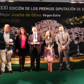 Ciudadanos (Cs) apoya a la industria del olivar como pilar fundamental del desarrollo económico en la provincia de Sevilla