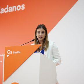 """Salmerón: """"Ciudadanos demuestra su compromiso con las familias con hechos frente a la política de titulares del PSOE"""""""