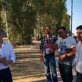 Ciudadanos Dos Hermanas exige la poda de los eucaliptos de las Palmeras de Doña Inés ante el peligro de su volumen