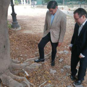 """Ciudadanos lamenta la """"oportunidad perdida"""" para apostar por la accesibilidad en los presupuestos de 2020"""