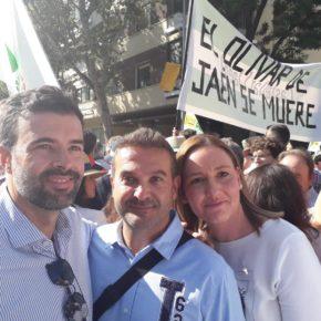 """Cambronero: """"Ciudadanos apoya las reivindicaciones de los olivareros porque son un sector fundamental frente a la despoblación"""""""