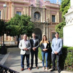 """Salmerón: """"Votar a Ciudadanos es votar el desbloqueo de la ampliación del Museo de Bellas Artes"""""""