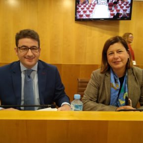 """Benjumea: """"Ciudadanos dice no a estos presupuestos del PSOE porque son irreales, irracionales e ineficaces"""""""
