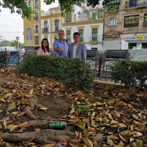 """Ciudadanos denuncia el """"déficit de limpieza y conservación del acerado"""" en el entorno del Altozano"""