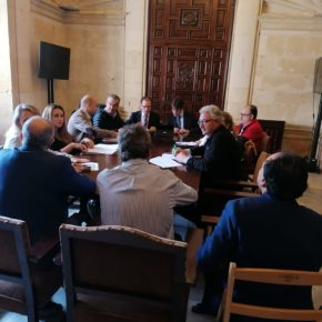 """Pimentel: """"Gracias a la denuncia de Ciudadanos se ha evitado la subida injustificada de sueldos en el IMD"""""""