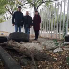 """Ciudadanos alerta del """"estado de degradación"""" y """"falta de limpieza"""" del Polígono Store"""