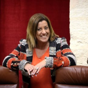 """Hormigo: """"El PSOE tiene otra oportunidad de mirar a los ojos a los dependientes sevillanos y demostrarles que apuesta por un sistema igualitario apoyando el Pacto de Estado que propone Ciudadanos"""""""