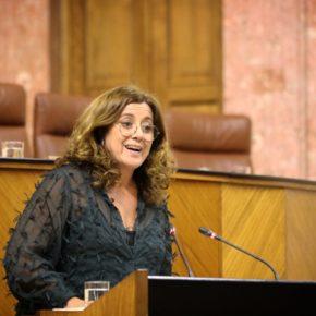 """Hormigo: """"El Decreto de Escolarización refuerza la libertad de las familias sevillanas en la elección de centro"""""""
