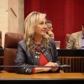 """Llopis: """"La gestión eficaz de Ciudadanos en el gobierno andaluz permite que abogados y procuradores sevillanos del servicio de justicia gratuita cobren los 2,2 millones de euros por sus servicios"""""""