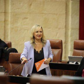 """Ciudadanos aplaude el """"esfuerzo"""" de la consejería naranja de Justicia para preservar la salud de empleados y usuarios en los Juzgados de Sevilla"""
