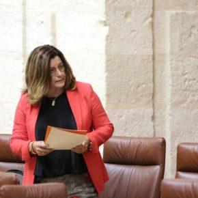 """Hormigo: """"Las infraestructuras educativas de Sevilla van a mejorar, tras años de abandono socialista, gracias a la buena gestión de Ciudadanos"""""""