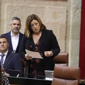 Ciudadanos Sevilla valora la nueva ley andaluza del suelo que desbloquea el desarrollo urbanístico y económico de los municipios