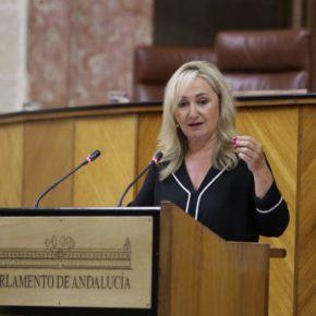 """Llopis: """"Ciudadanos facilita la reactivación del comercio sevillano gracias al sello 'Andalucía Segura'"""""""