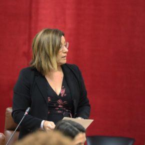 """Hormigo: """"Por fin los docentes sevillanos verán reconocida su autoridad gracias al apoyo decidido de Ciudadanos"""""""