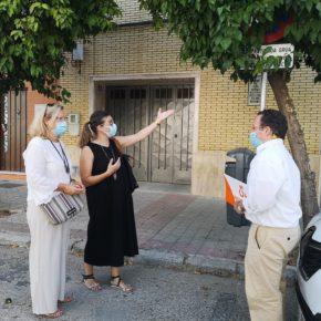 """Ciudadanos denuncia la """"invasión de ramas de árboles"""" en las """"farolas, señales de tráfico y viviendas"""" de Nervión"""