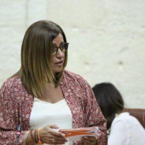 """Hormigo: """"Ciudadanos cumple con los más vulnerables reforzando con 100 profesionales los Servicios Sociales de Sevilla para agilizar la Renta Mínima"""""""