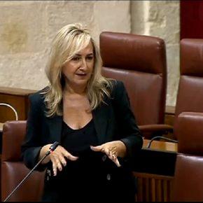 """Ciudadanos valora la apertura de los nuevos Juzgados de Sevilla como un """"impulso sin precedentes"""" a un servicio olvidado por los socialistas"""