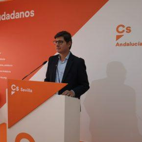 """Pimentel (Cs): """"El plan 'Andalucía en Marcha' hará posible una transformación de Sevilla y sus infraestructuras"""""""