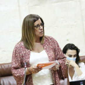 """Hormigo: """"Ciudadanos apoya a las universidades públicas de Sevilla con 25 millones de euros para afrontar la COVID-19"""""""