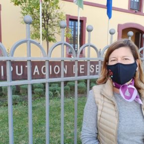 """Ciudadanos considera """"irrenunciable"""" que el presupuesto de Diputación incluya ayudas directas a autónomos y comerciantes para afrontar los gastos de la pandemia"""